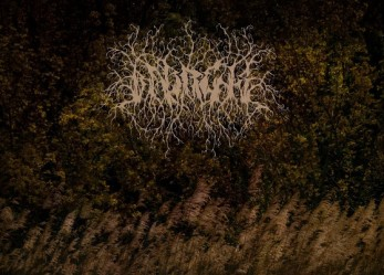 "Cursed to Eternal Solitude and Despair: ""Circles"" by BARRENS – Review + Stream"