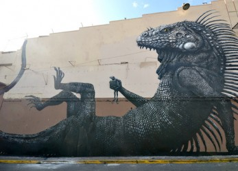ROA Street Art Reigns Supreme!