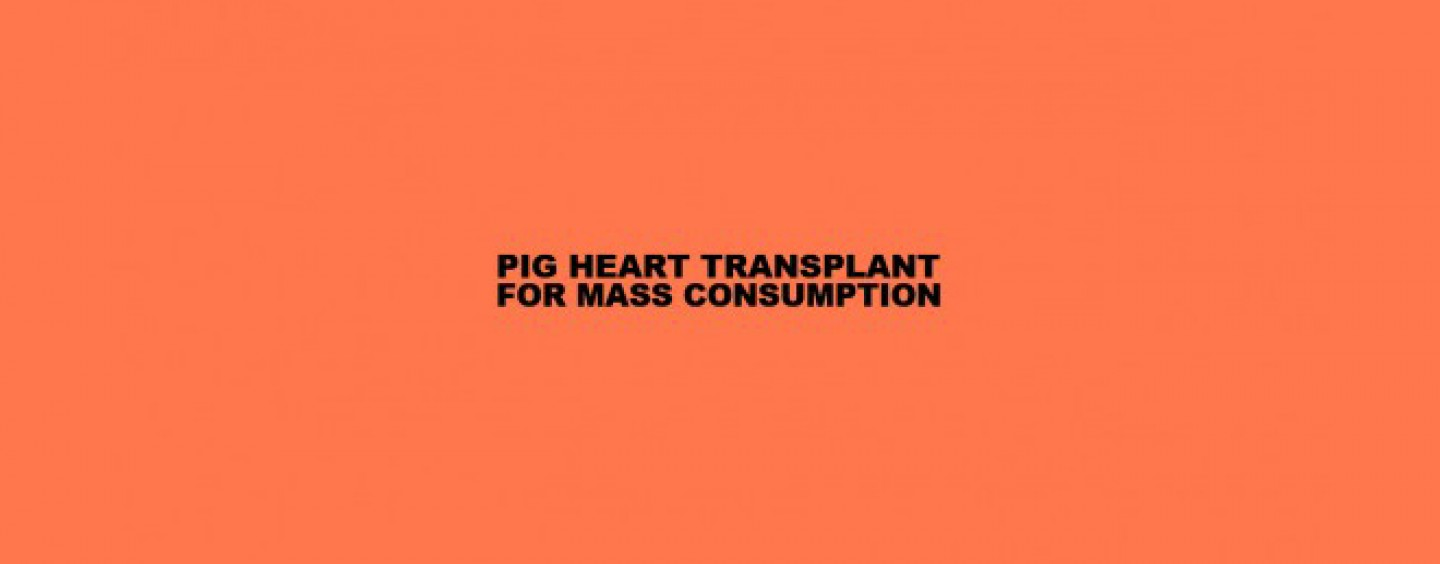 "For Mass Consumption: <br/>PIG HEART TRANSPLANT Track Stream ""Film"" & ""Gift"""