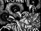 Uncontrolled Chaos: NO BRAINER // AUGURS Split 7″ – Review + Stream