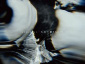 Transcendant Genre-Bending Music from Japan – Sukekiyo's 'IMMORTALIS'