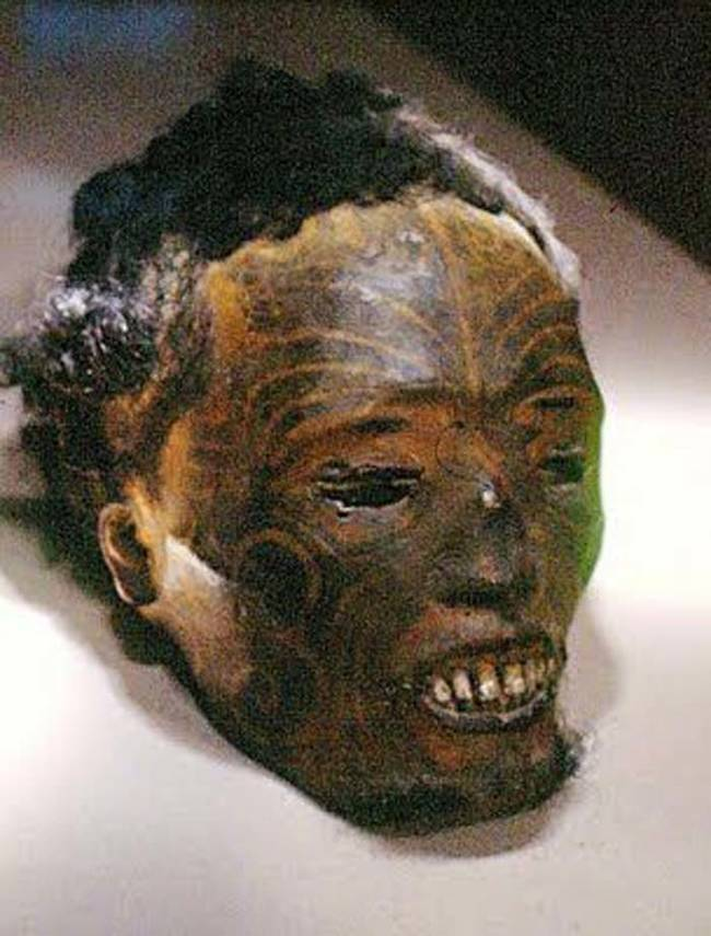 Mokomokai The Preserved Heads Of Maori Tribespeople