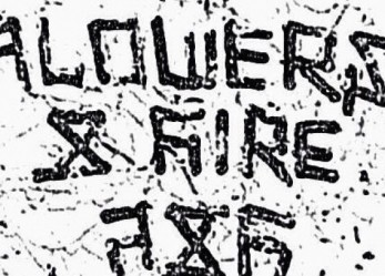 Best Post-Punk Demo <br/>We Have Heard This Week! <br/>FLOWERS & FIRE Full Streaming Now!