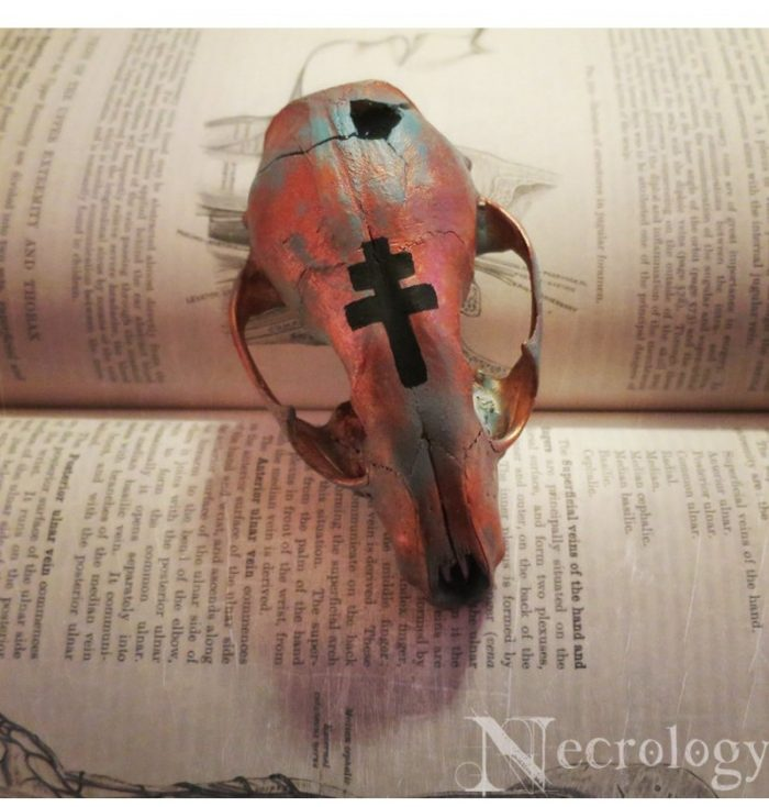 Necrology - Witchy Painted Raccoon Skull
