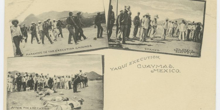 execution and decay  brutal postcards from the mexican