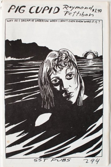 the master of black ink  raymond pettibon zines