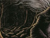 CVLT Nation Interviews Woods of Desolation