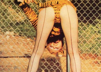 Human Fly! The Cramps <br/>1981 Mudd Club <br/> Full Set Now Showing