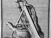 The Skulls & Bones Alphabet: <br/>A Look At William Cowper's<br/> Myotomia Reformata