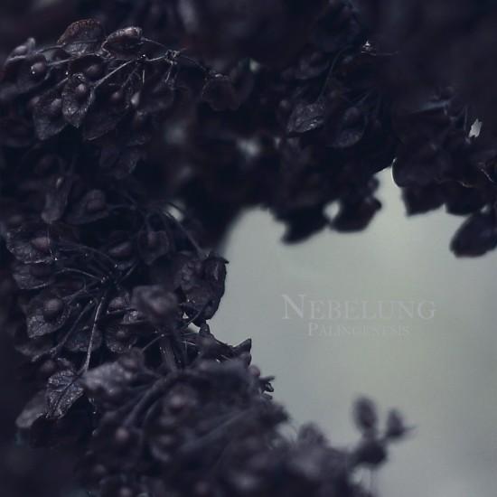 nebelung_palingenesis