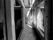 George Georgiou Serbia/Kosovo Psychiatric Ward Photo Essay