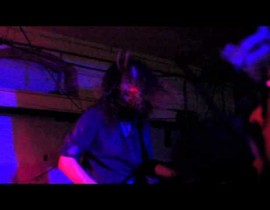 Now Showing: Ash Borer Live! <br/>