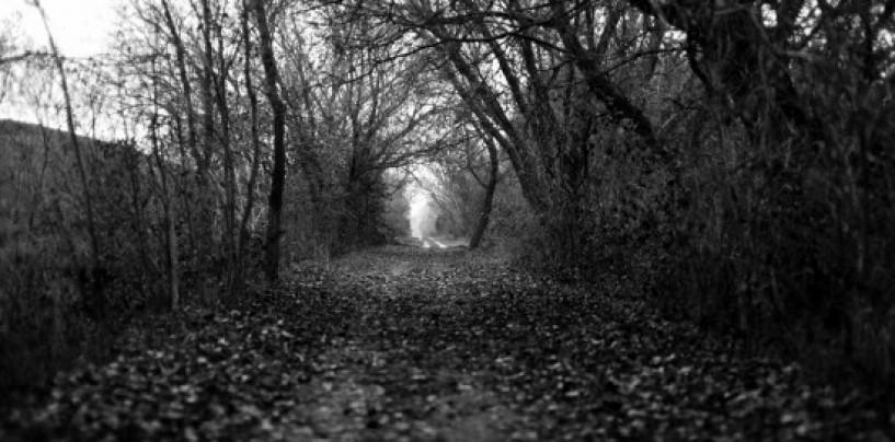 Seven Stories…Anthony Abbatangelo