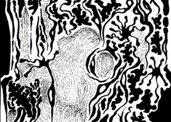"Free Download: <br/>666% Manaical Black Metal! <br/>VOIDCRAEFT"" In Disgust"""
