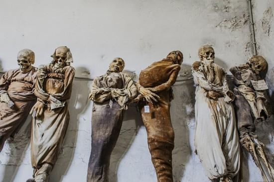 capuchin_mummies1