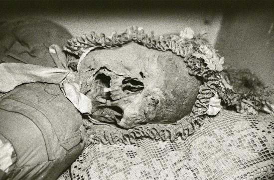 capuchin_mummies3