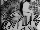"Venus Star ""Wild Grains & Turningheads…"" EP<br/>"