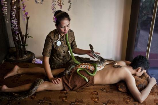 snake_massage1_2