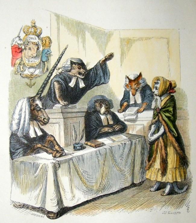 cat-in-court