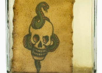 DEAD SKIN, NEW ART: <br/>Polish Prison Tattoos Preserved