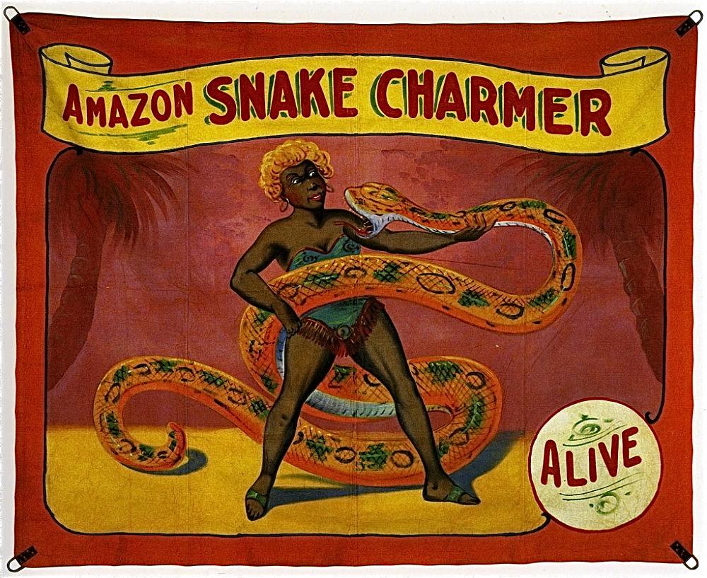 Lady Snake Dog Toy