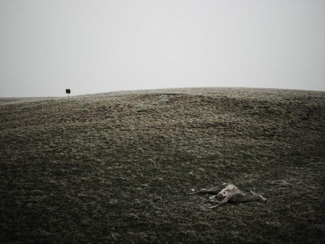 Hunting, Pennylsvania