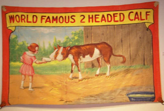 two-headed-calf-banner
