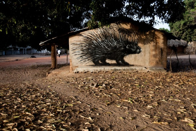 ROA-2011-The Gambia-WOW-picture by Jonx-IMG_3121_1000