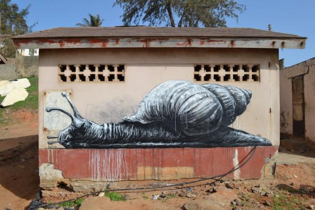 ROA-2012-THE GAMBIA-Bakau-DSC_0130_1000