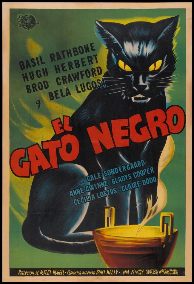 black-cat-2