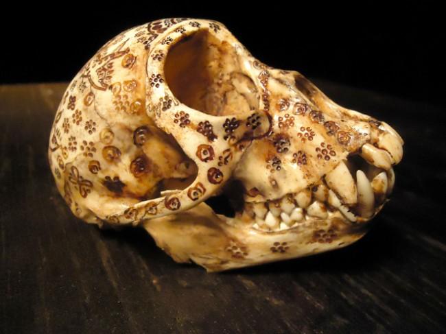 bones-jason-borders-portland-art
