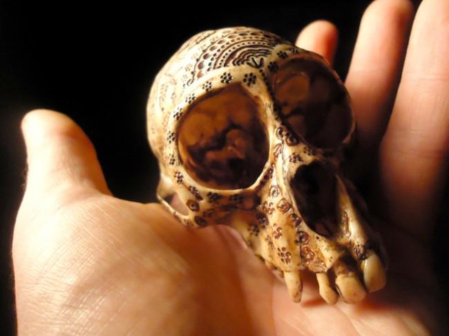 carved-monkey-skull-jason-borders