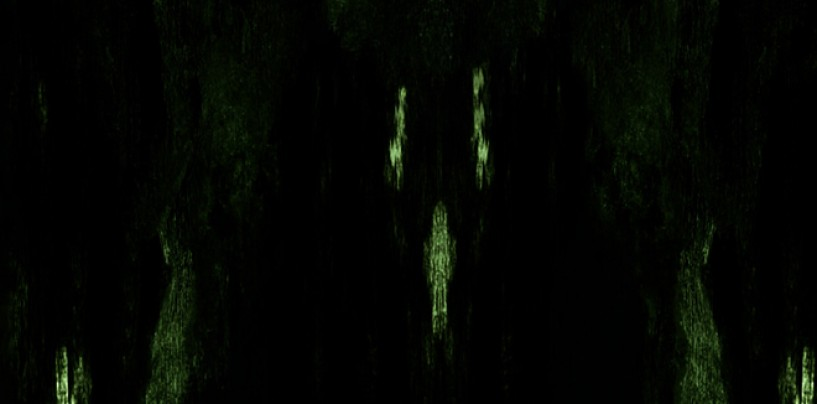 IMPETUOUS RITUAL <br/>Unholy Congregation Of Hypocritical Ambivalence<br/>Review + Stream