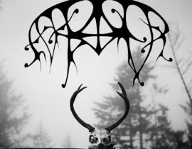 Brooklyn Is Obliterated! <br/>ASH BORER &#038; HELL Full Sets <br/> Now Showing!