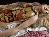 Disemboweled Beauty…<br/>The 18th Century <br/>Anatomical Venus