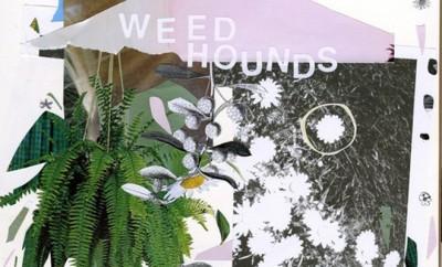 weedhoundscover