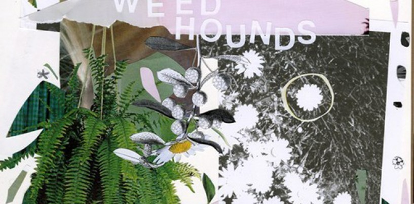 Two Perfect Shoegaze Songs! <br/>New WEED HOUNDS Streaming Now!