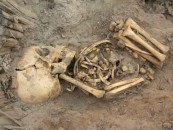 Throwing the Babies Out with the Bathwater: <br/>The Skeletal Remains of Ashkelon