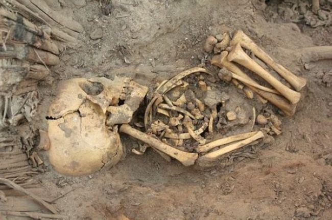 Dozens-of-dead-babies-in-Israel-001