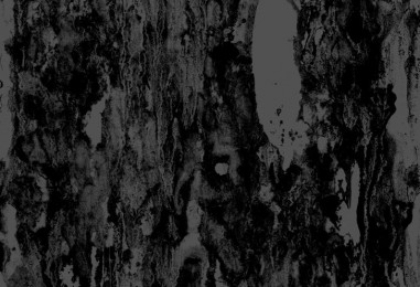 """Sick Fucking DOOM… <br/>New SWAMP WITCH """"Strange Cults"""" <br/>Streaming Now"""