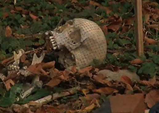 Criminals, Death & Decay: The Secrets of the Body Farm Documentary Now Showing