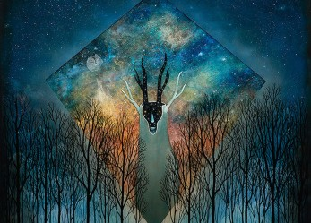 The Wild Kingdom is at Peace with Andy Kehoe