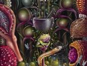 A Nightmare In Beauty… <br/>The Art of Robert Steven Connet