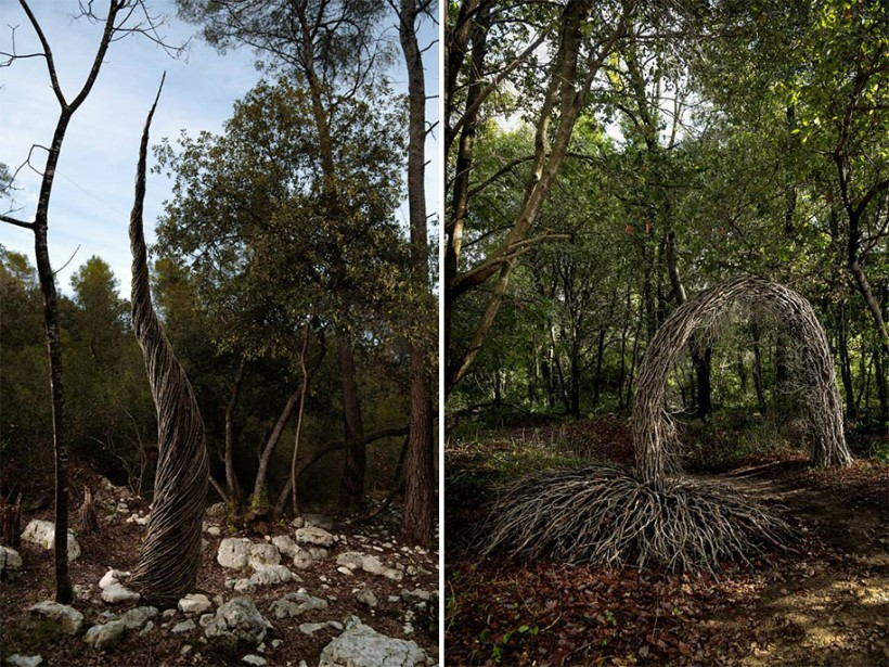 forest-land-art-nature-spencer-byles-17