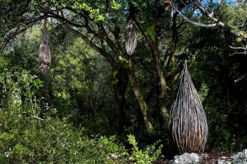 forest-land-art-nature-spencer-byles-6