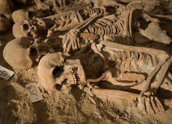 Medieval Mass Grave Found! <br/>200 Skeletons Under Paris Super Market