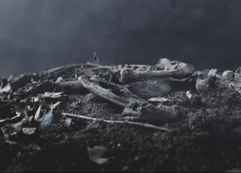 "CVLT Nation Video Premiere <br/>Treha Sektori ""Sahe Fernah"""