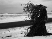 The Dark Ones… Philip Ob Rey's V