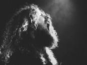 Flesh From Bone-New Intense!<br/> FELL VOICES Full Set