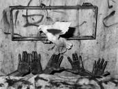 Roger Ballen's Asylum of the Birds